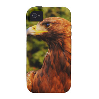 Brown Eagle Eye iPhone 4/4S Cases