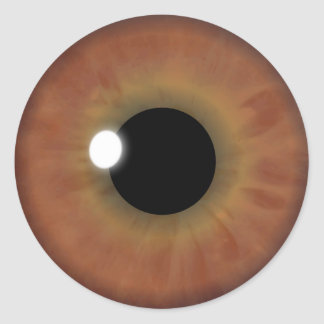 Brown Eye Iris Cool Eyeball Custom Round Stickers
