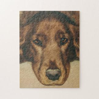 Brown Eyed Golden Irish Dog Jigsaw Puzzles