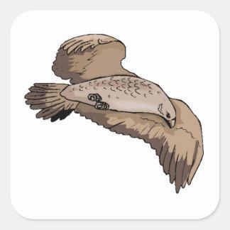 Brown Falcon Sticker