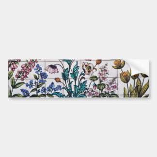 Brown Flowers in a pharmacy, Triana, Seville, Spai Bumper Sticker