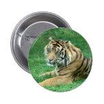 Brown Fur Black Stripes Tiger Sitting button badge