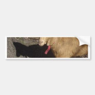 Brown Goat Bumper Sticker