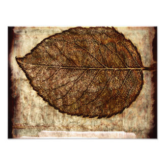 Brown Gold Fall Leaves Photo Print
