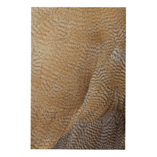Brown Goose Feather Abstract Wood Wall Decor