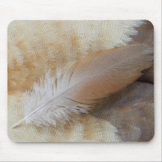 Brown Goose Feather Still Life Mouse Mat