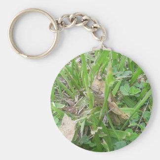 Brown Grass Hopper Hiding In Green Grass Keychain