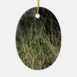 Brown green grass background design photo ceramic oval decoration