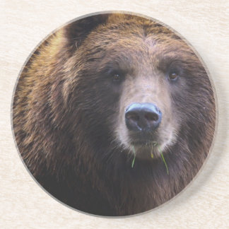 Brown Grizzly Bear Sandstone Coaster