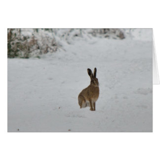 Brown hare in snow Christmas card