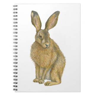 Brown Hare Notebooks