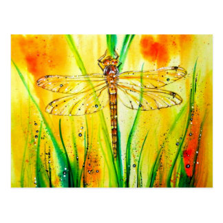 Brown Hawker Dragonfly Postcard
