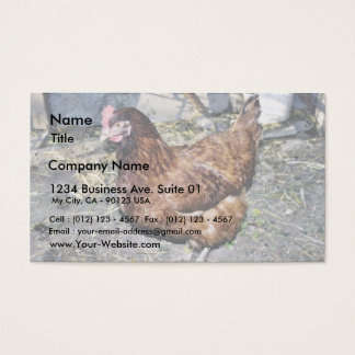 Brown Hen On The Back Yard Business Card