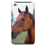 Brown horse, close-up Case-Mate iPod touch case