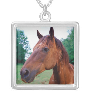 Brown horse, close-up silver plated necklace