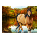 brown horse, flowers,tree postcard