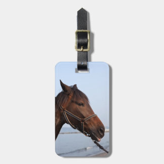 Brown horse head luggage tag