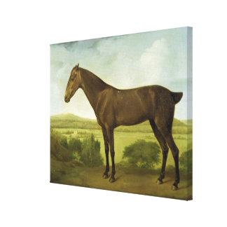 Brown Horse in a Hilly Landscape, c.1780-1800 (oil Canvas Print