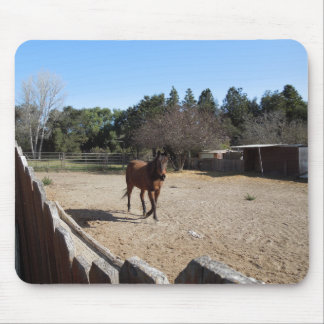 Brown Horse in Los Alamos, CA Mouse Pad