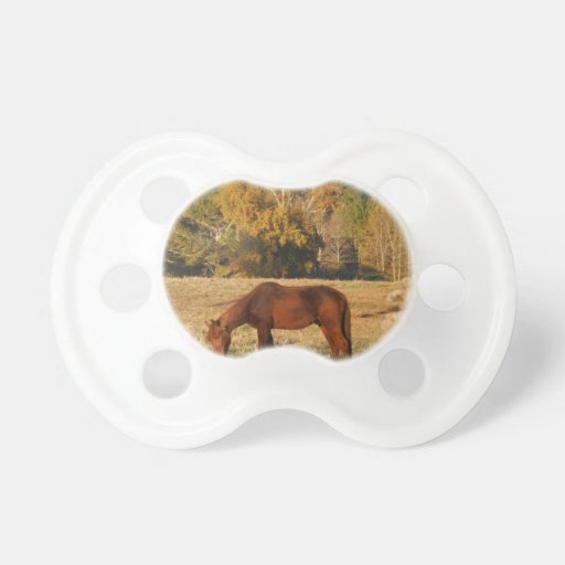 Brown horse in  yellow tree field baby pacifier