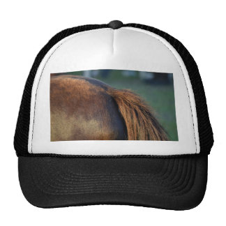 brown horse pony tail flank equine animal design mesh hat
