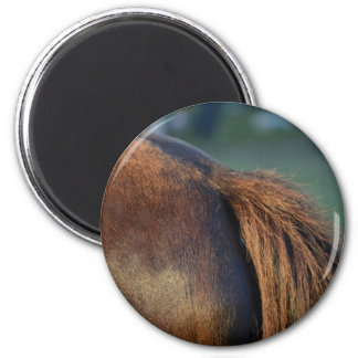 brown horse pony tail flank equine animal design magnet
