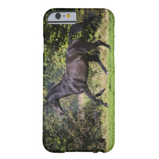 brown horse running on meadow barely there iPhone 6 case