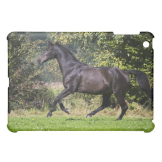 brown horse running on meadow iPad mini cover