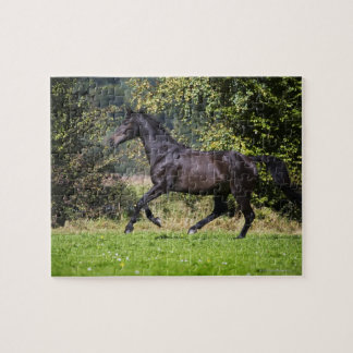 brown horse running on meadow jigsaw puzzle