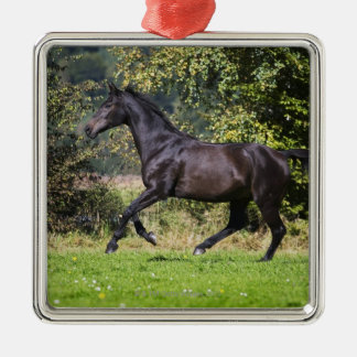 brown horse running on meadow Silver-Colored square decoration