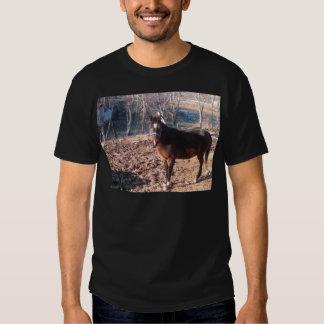 Brown Horse Shirt