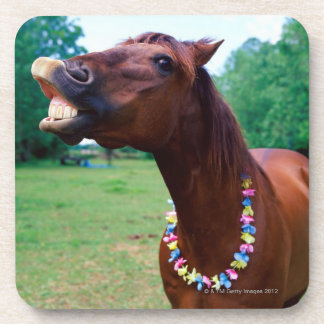 Brown horse wearing necklace, baring teeth, drink coasters