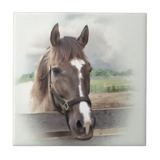 Brown Horse with Bridle Tile