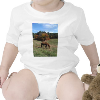 Brown horse with fall trees tshirts