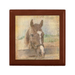 Brown Horse with Halter on Old Wood Small Square Gift Box