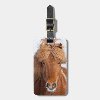 Brown Icelandic Horse Portrait Luggage Tag