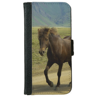 Brown Icelandic Pony with Scenic Backgronud iPhone 6 Wallet Case