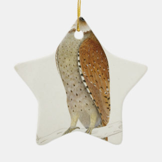 Brown Illustrated Owl on Branch Christmas Ornament