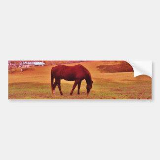> Brown in a dreamy colored field Bumper Sticker