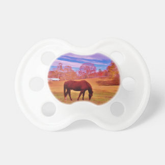 Brown in a dreamy colored field pacifiers