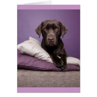 Brown Labrador Retriever Puppy Dog Blank Note Card