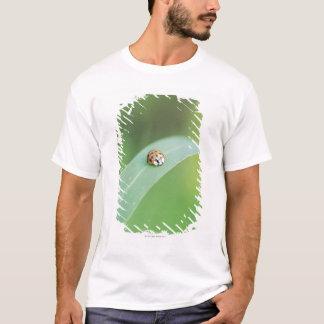 Brown ladybug T-Shirt