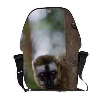 Brown lemur (Eulemur fulvus) in the forest 3 Messenger Bag