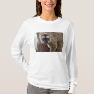 Brown lemur (Eulemur fulvus) in the forest T-Shirt
