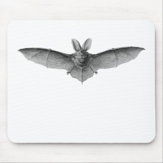Brown & Lesser Long-eared bats Mouse Pad