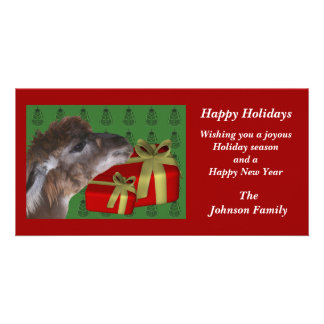 Brown Llama Farm Animal Christmas Holiday Card Personalised Photo Card