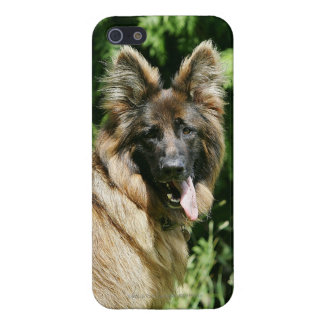 Brown Long Haired German Shepherd 1 Case For iPhone 5/5S
