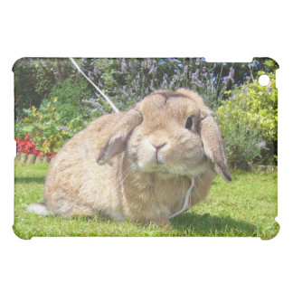 Brown lopped ear rabbit with lavender iPad mini case