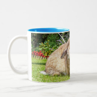 Brown lopped ear rabbit with lavender Two-Tone coffee mug