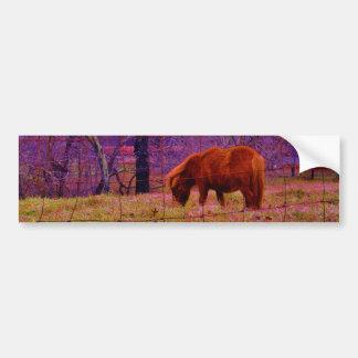 Brown miniature Horse  Purple sky Bumper Sticker